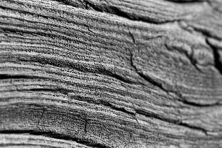 wood-1-